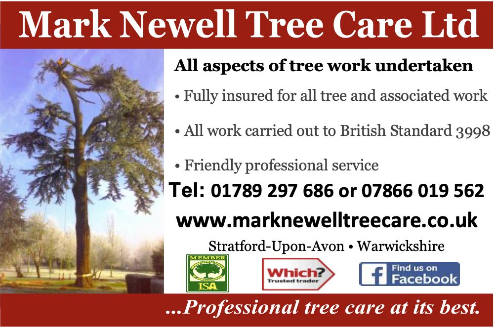 marknewelltree